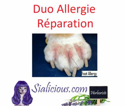 Réaction allergique