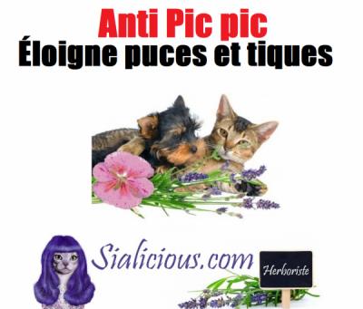 Anti PIC-PIC (puce et tique)