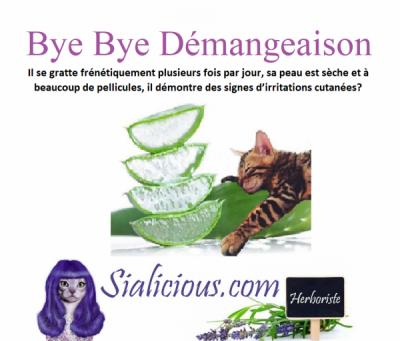 Bye Bye Démangeaison