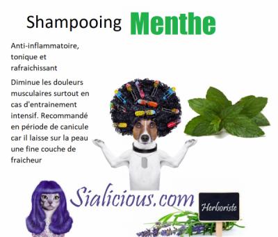 Shampooing MENTHE VERTE