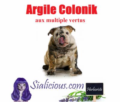 ARGILE COLONIK